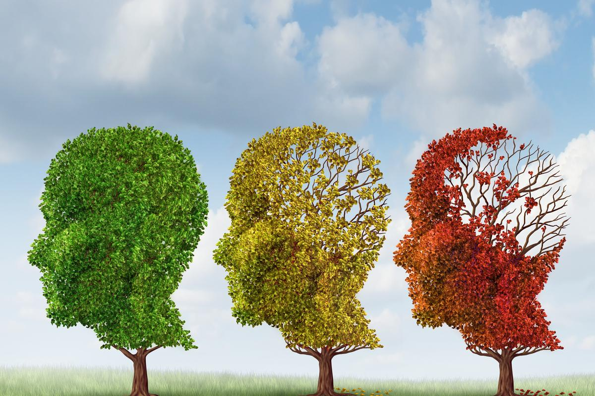 "New research has provided ""strong hope"" of finding a drug to combat Alzheimer's (Image: Shutterstock)"
