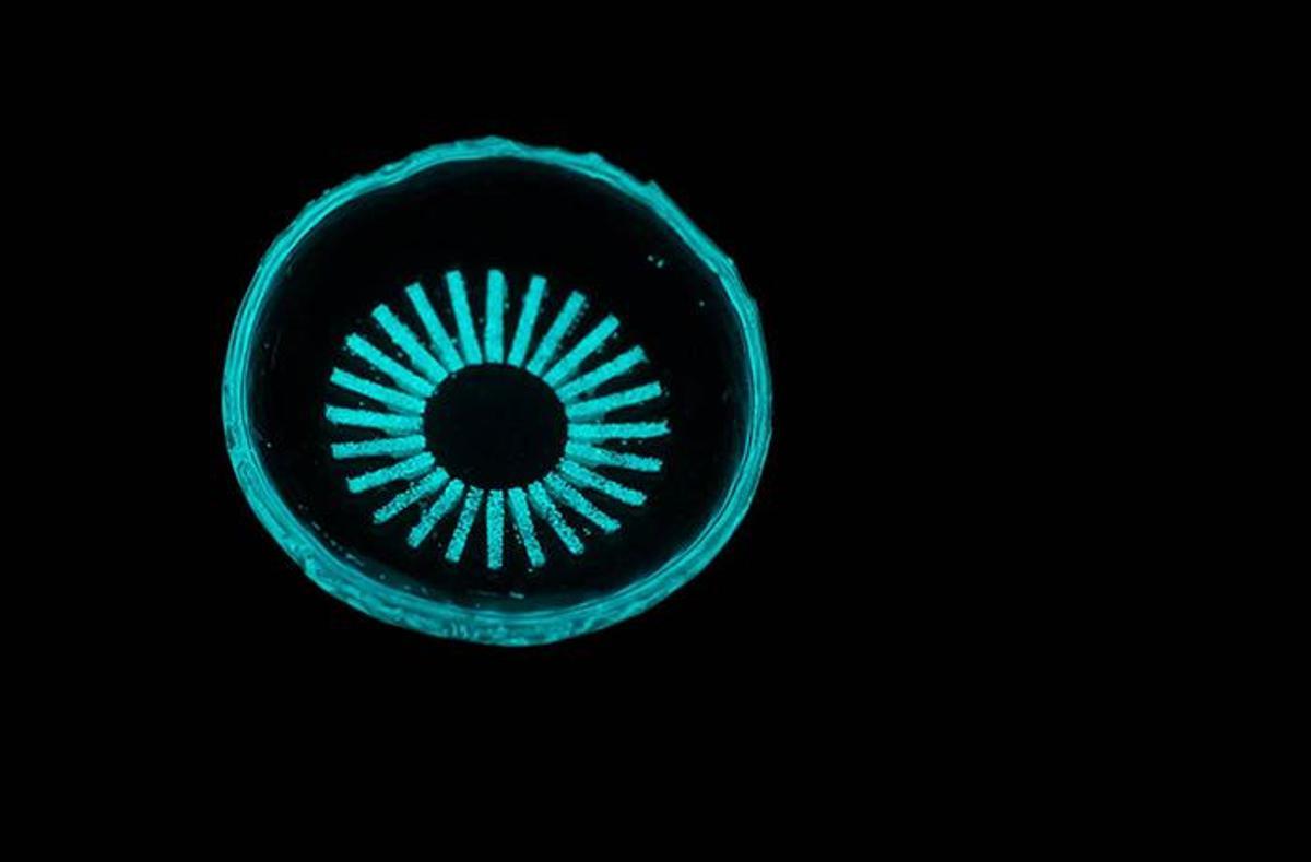 The lenses incorporate tiny vials of tritium