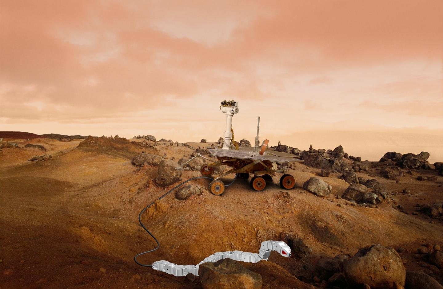 Artist's impression of a robot snake and a rover on Mars (Image: James Steidl/Shutterstock.com)