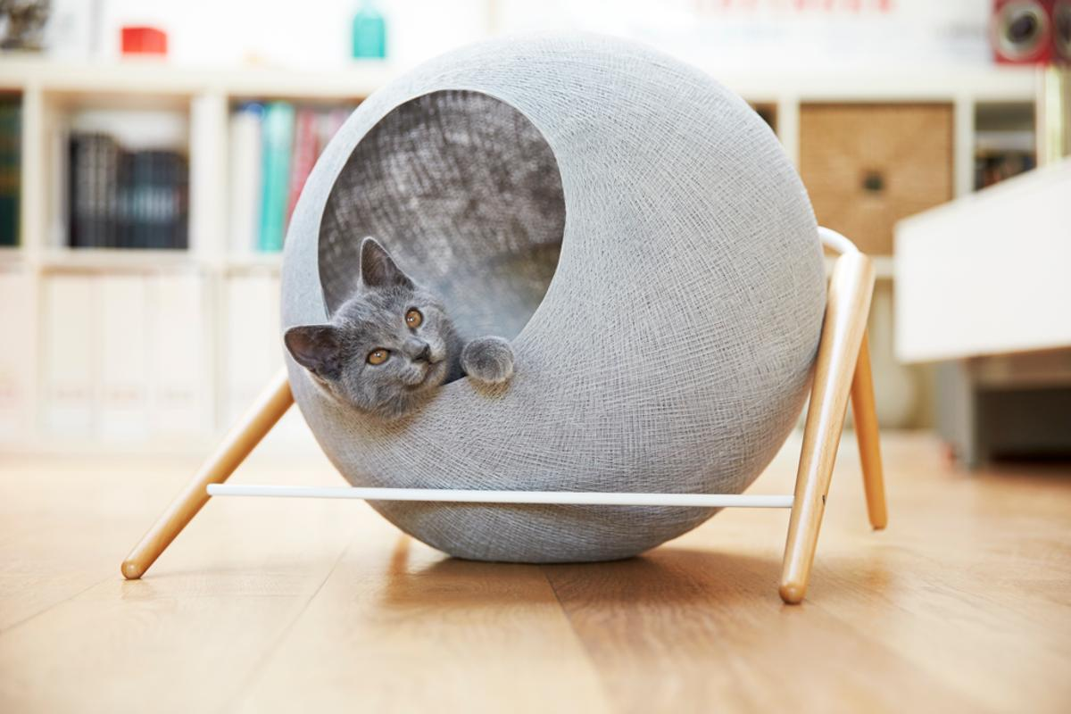 Meyou's feline furniture line currently comprises just three cat beds, though more are planned for the future
