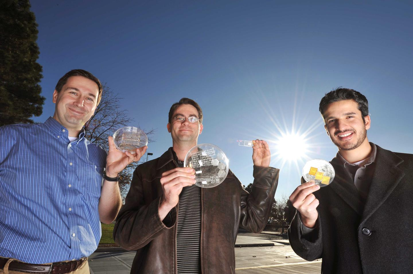 Sandia researcher team hold samples containing arrays of microsolar cells (Image: Randy Montoya)