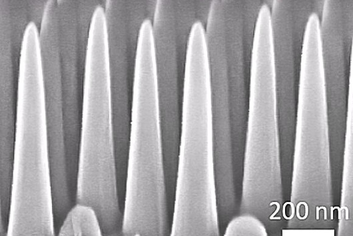 A scanning electron micrograph of a cross-section of the MIT nanotextured glass (Photo: Hyungryul Choi and Kyoo-Chul Park)