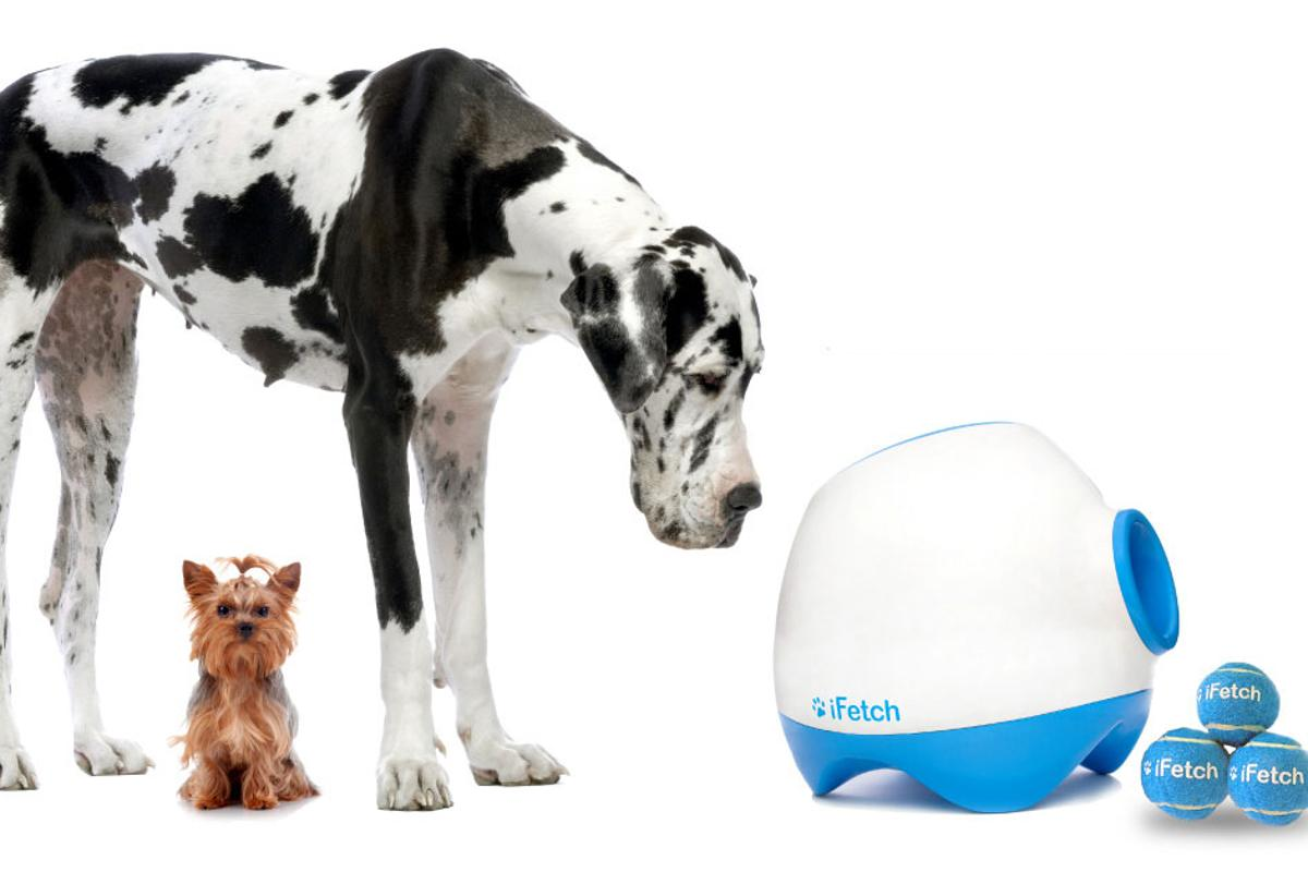 iFetch Too is a ball-launcher for the big dogs