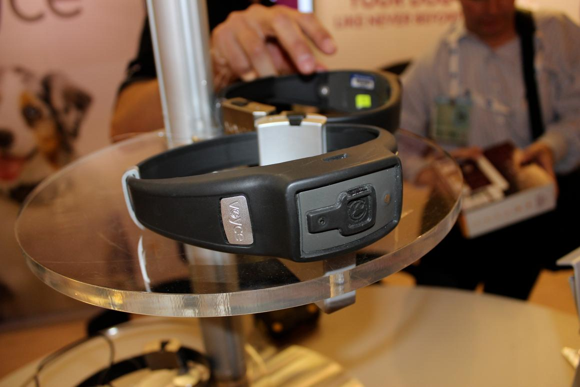 The Voyce wearable health band for dogs from i4C Innovations (Photo: Ben Coxworth/Gizmag)