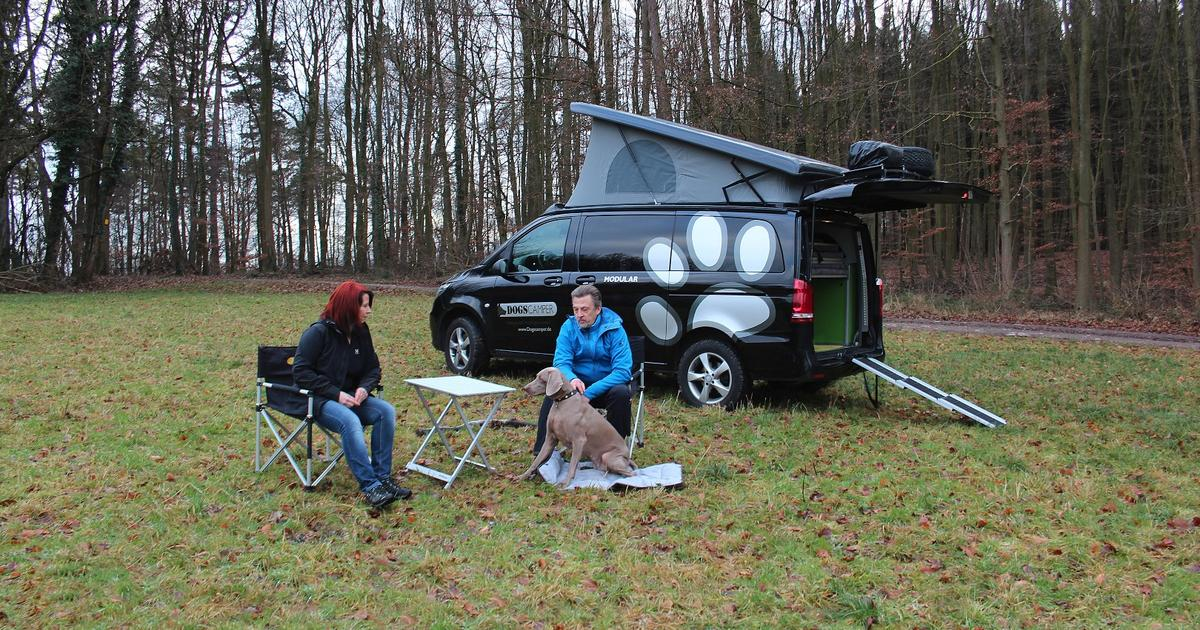 This modular camper van is one for the dogs (and their owners)