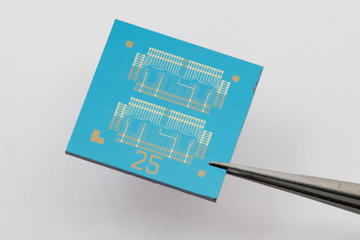 A new computer chip developed at EPFL uses a 2D material to perform both logic operations and memory storage