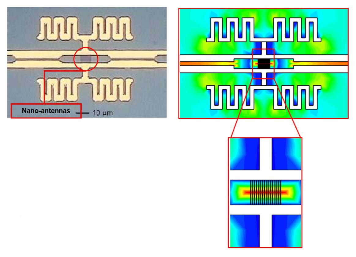 Optical microscope picture of the antenna structure (left) alongside the electric field distribution (right)