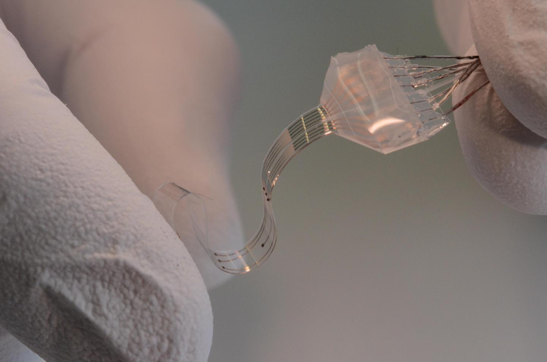 EPFL's soft-and-stretchy e-Dura implant (Photo: EPFL/Alain Herzog)