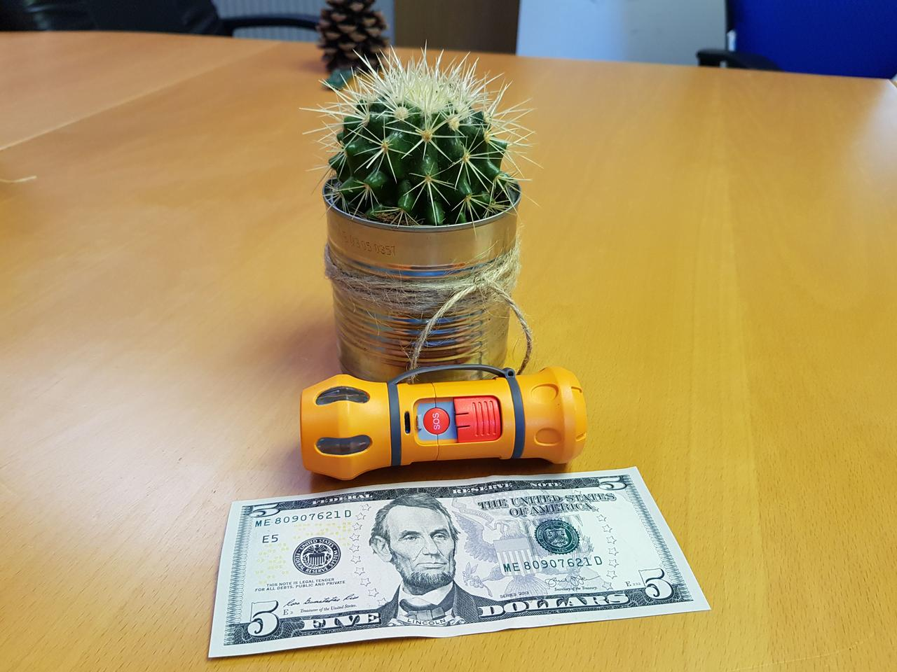 The Hero, with a five-dollar bill (and a cactus) for scale