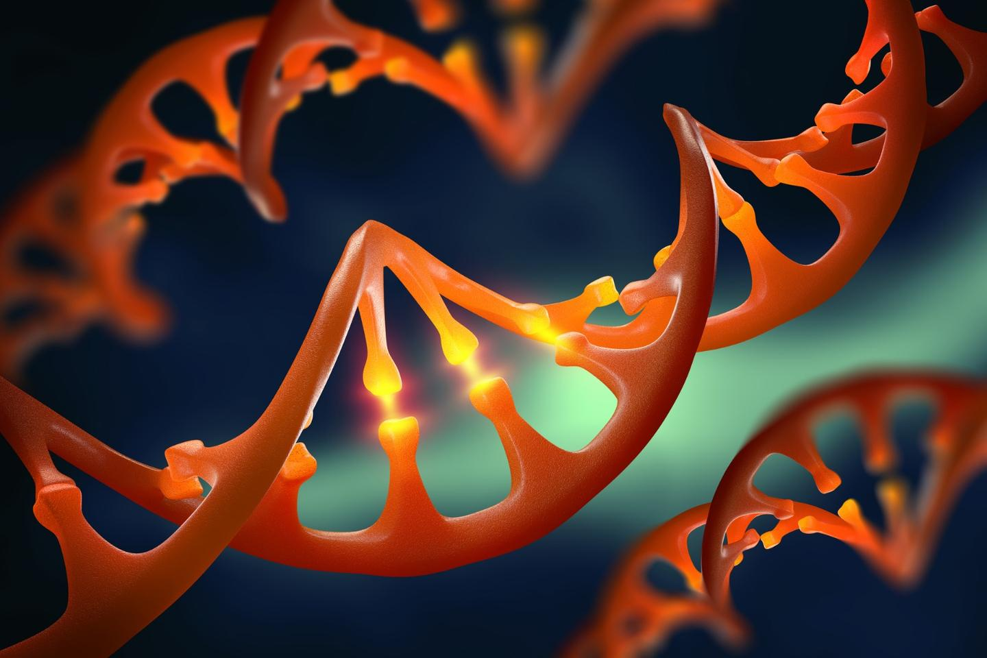 CRISPR is known to fail about 15 percent of the time and a new study has uncovered why this happens and how it can be fixed