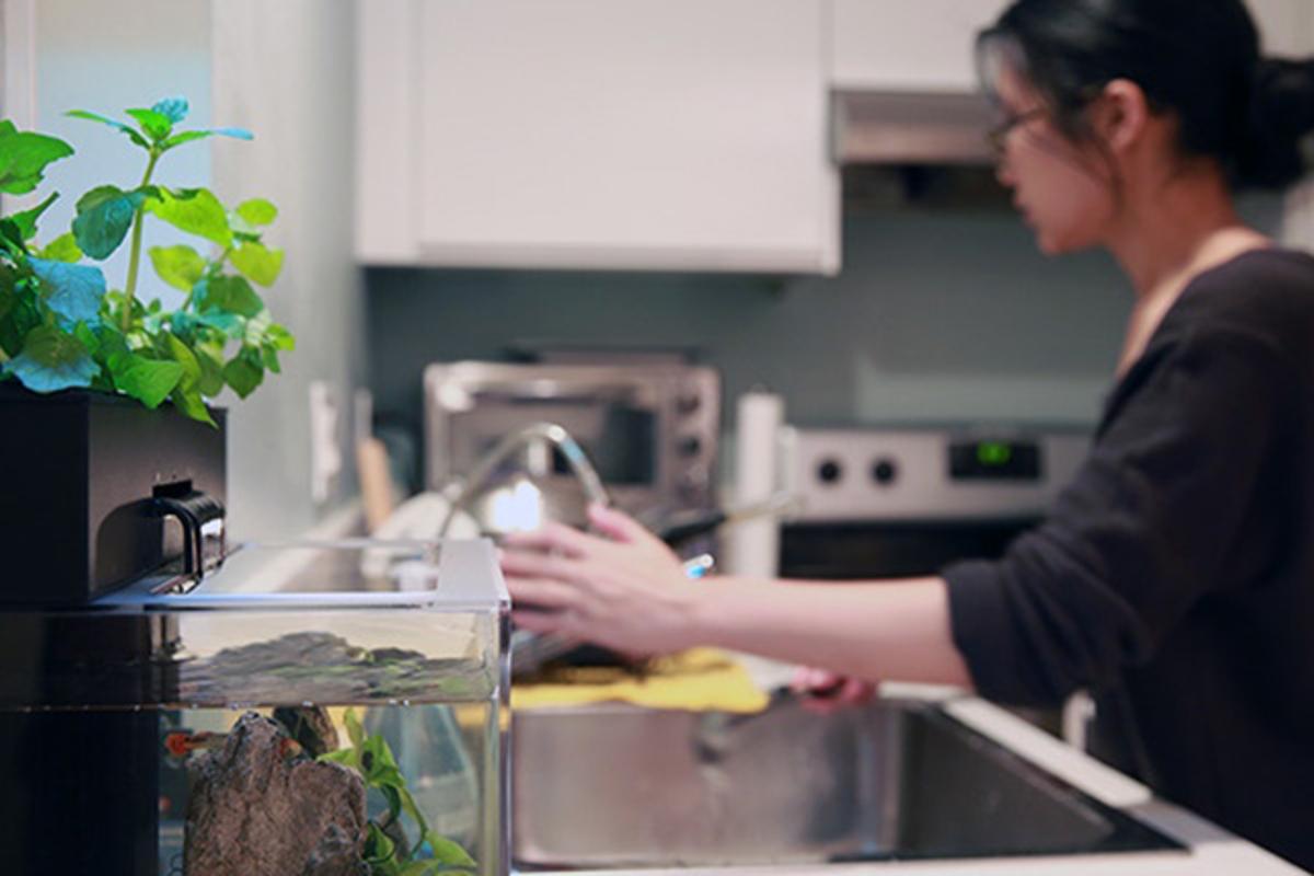 Aqua Design Innovations has returned to Kickstarter to fund the EcoQube C+