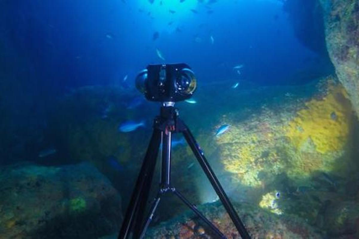 The Boxfish 360 is a professional-grade 360-degree underwater camera with Micro Four Thirds sensors