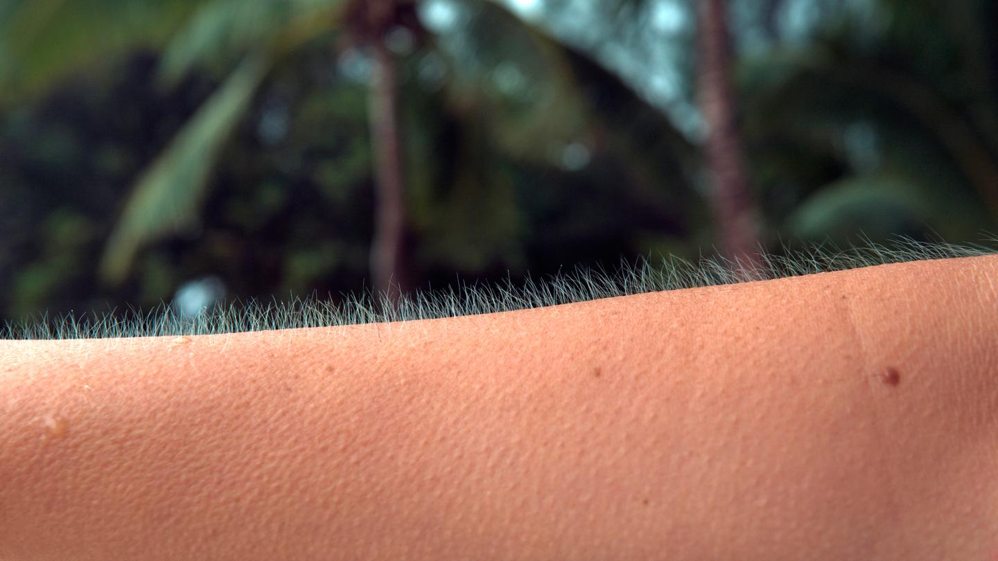 A new study reveals why we get goosebumps when it's cold