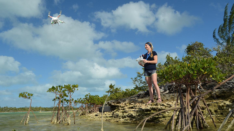 Enie Hensel launchesaDJI Phantom Vision+ 2 to observe marine fauna