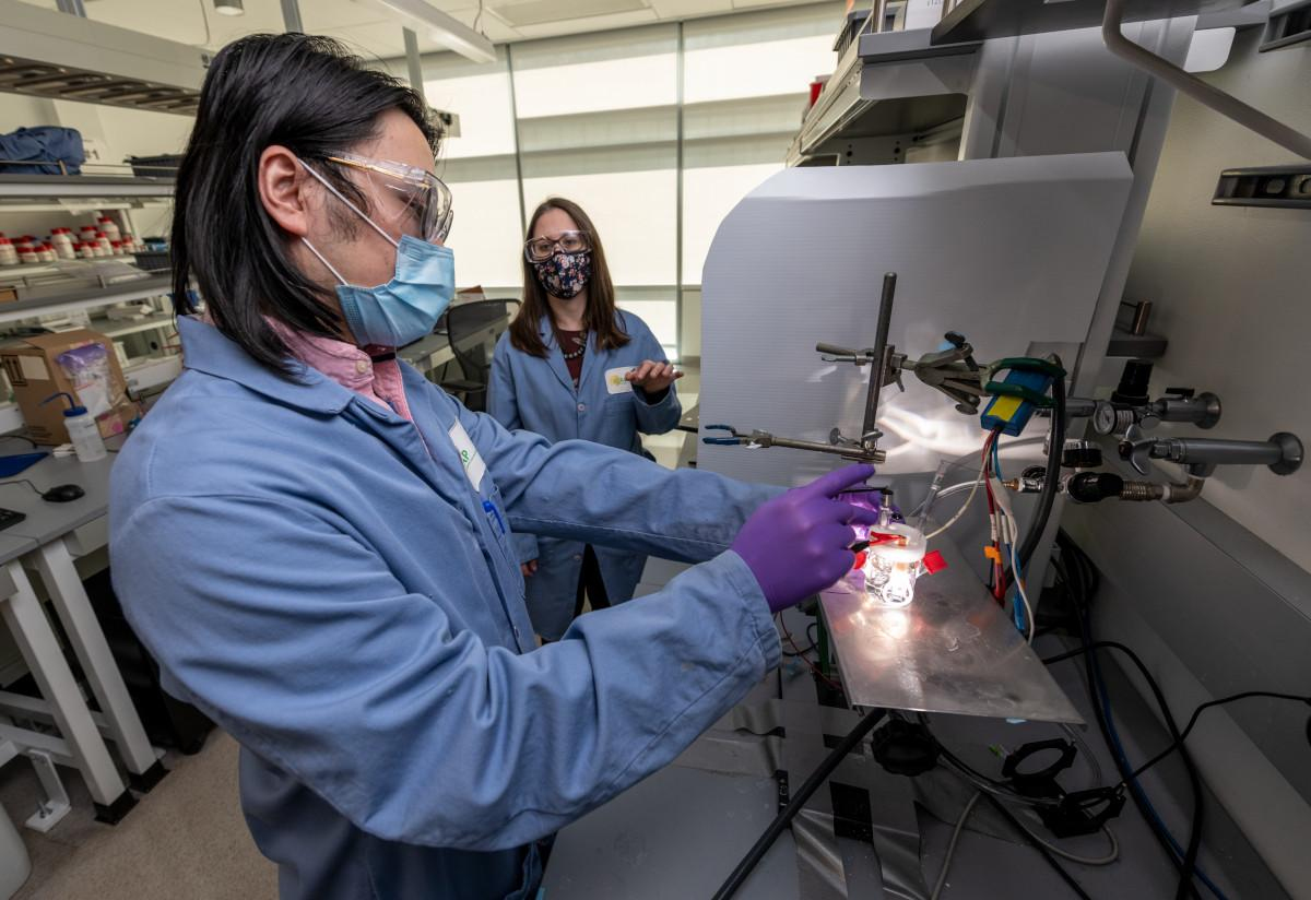 Study authors Francesca Toma (rear) and Guosong Zeng at work on their self-improving artificial photosynthesis device