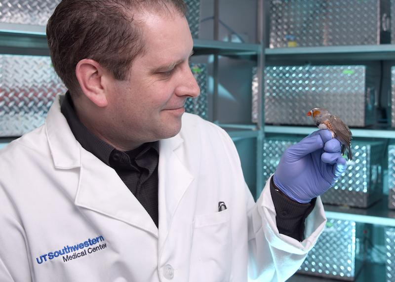 Lead researcher Todd Roberts with a finch