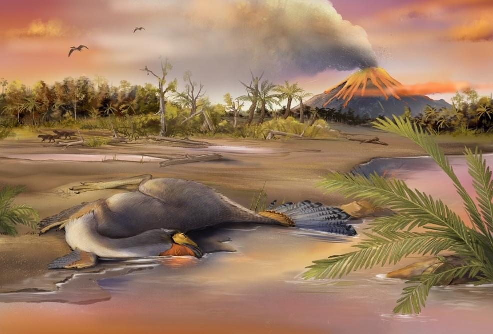 An artist's impression of the Caudipteryx specimen and the environment of the Jehol Biota in which it lived