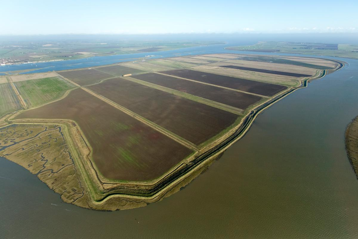 The completed Wallasea Island will host tens of thousands of migratory birds