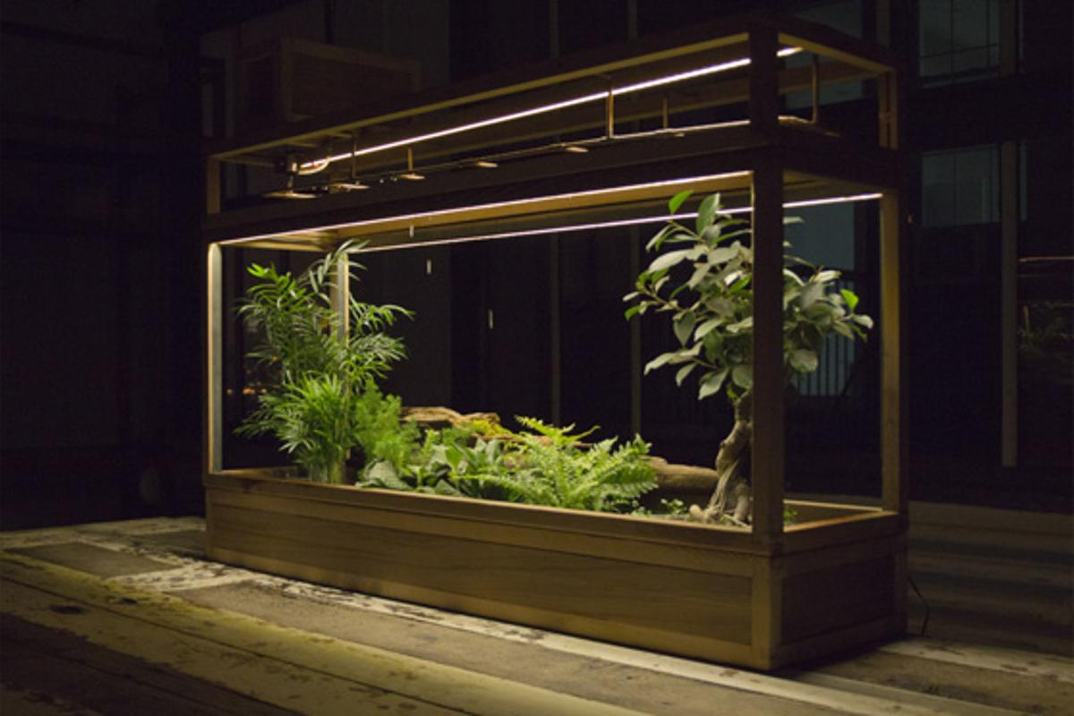 Plant-in City is a smart garden system that uses computer software to monitor water and light