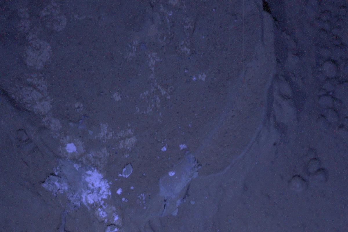 "MAHLI's first night imaging of Martian rock called ""Sayunei"" under ultraviolet lighting (Image: NASA/JPL-Caltech/MSSS)"