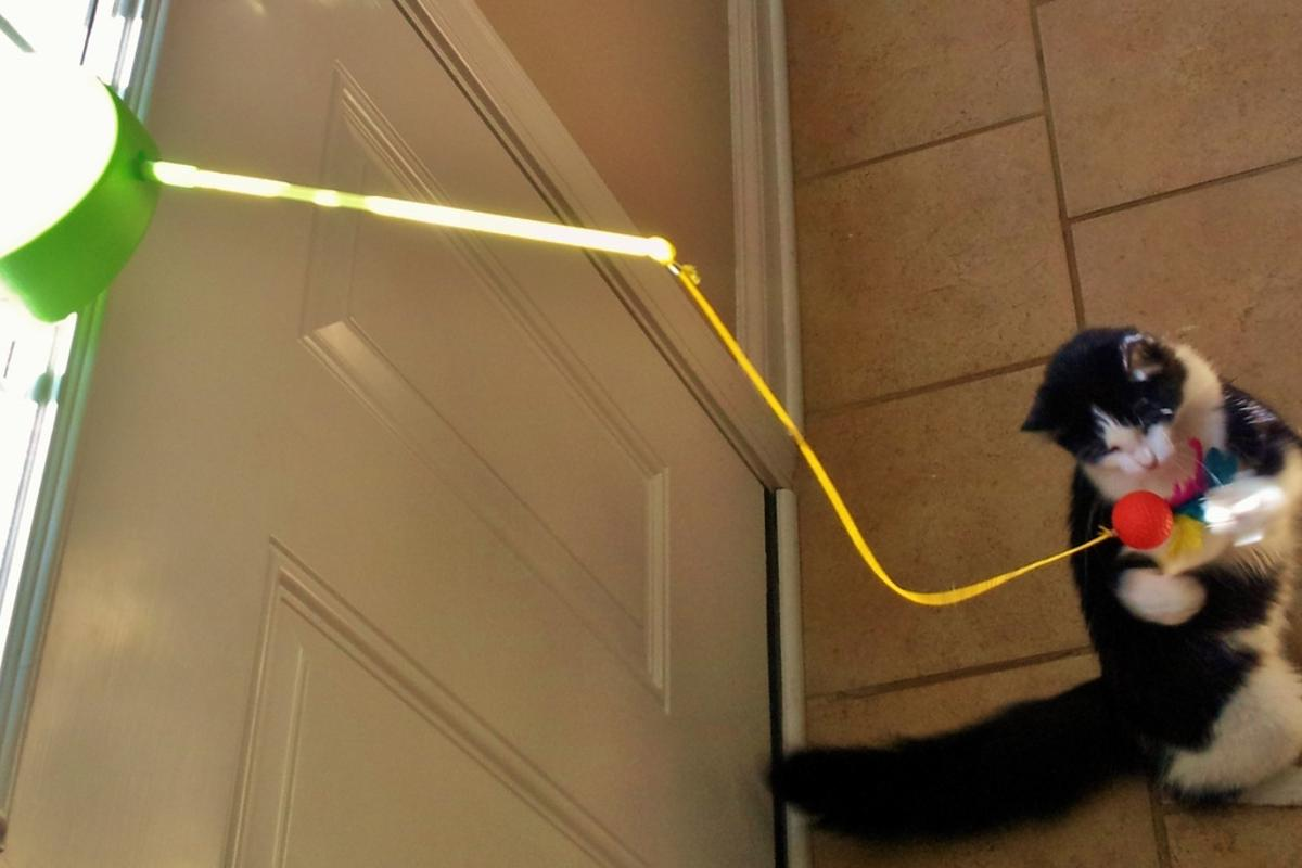 The Solar Chaser is a solar-powered cat toy – hey, why not?