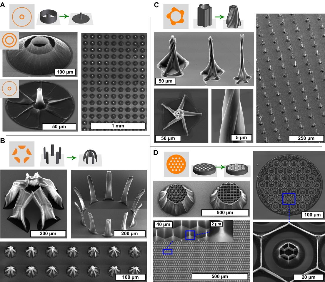 Examples of the 3D nanotube structures created by capillary forming (Photo: A. John Hart)