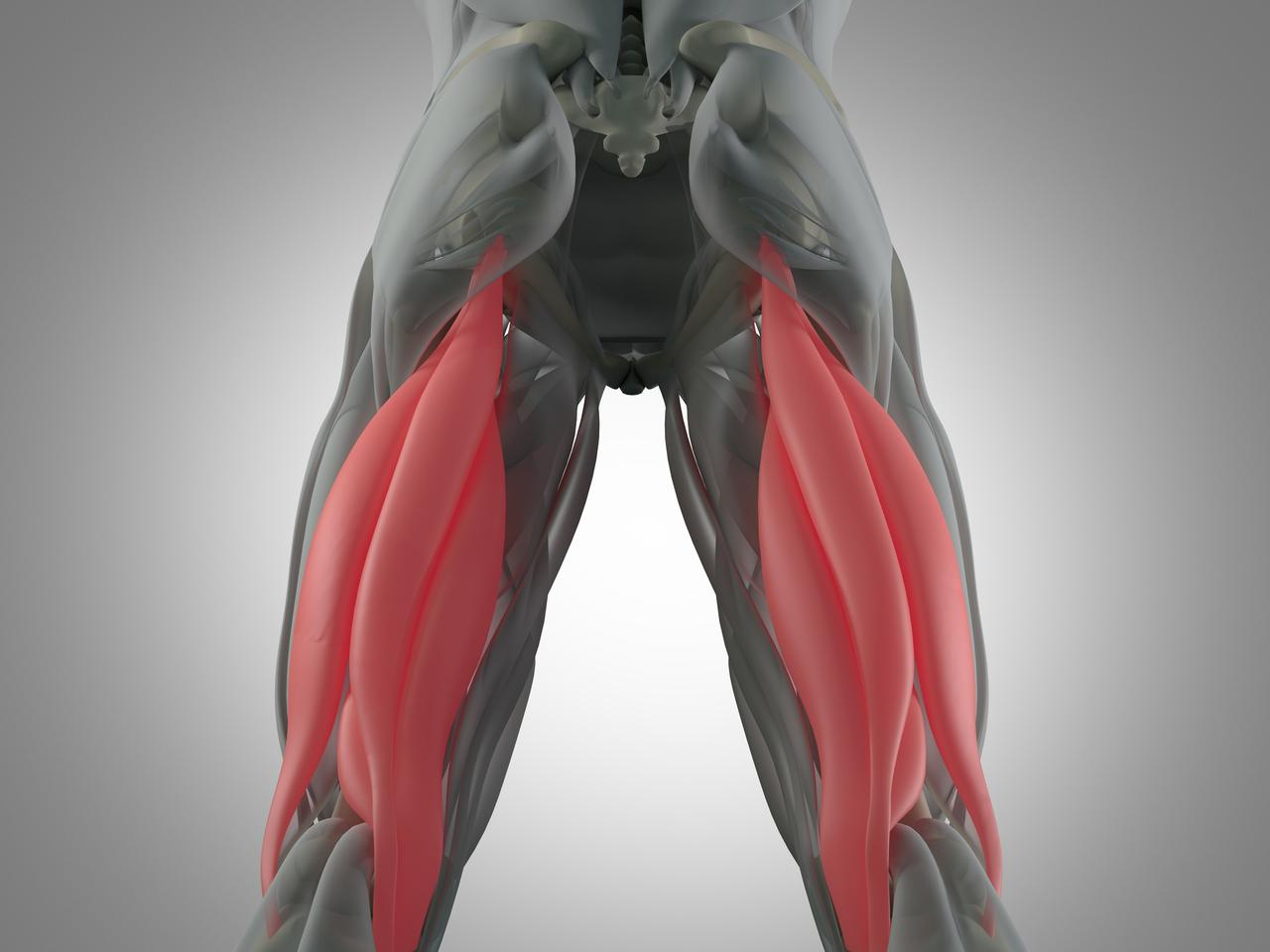 Scientists hope to one day regenerate damaged muscles by using a technique called direct cell reprogramming, and a new study is a step in the right direction