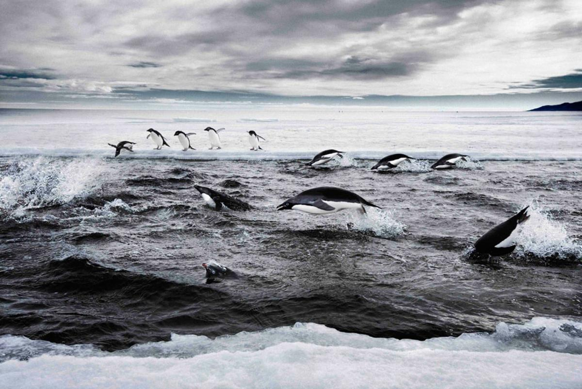 Melting ice inAntarctica poses a real threat to coastal communities around the world