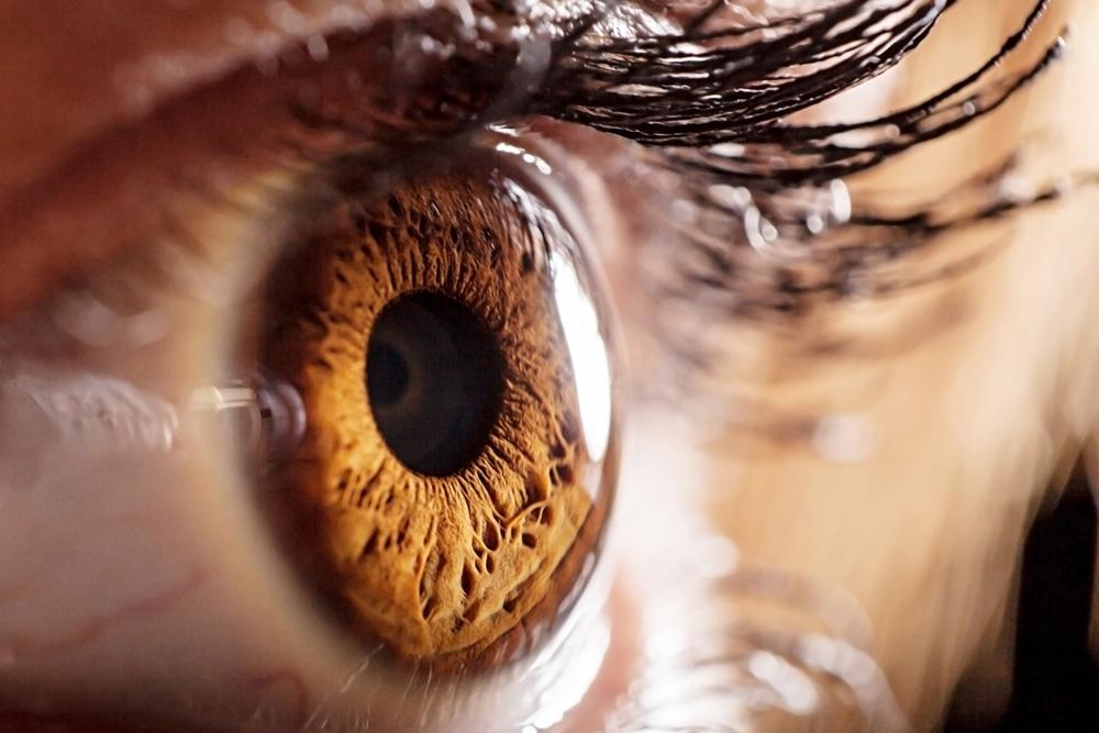Scientists have discovered a new protein found to play a role in diabetic retinopathy