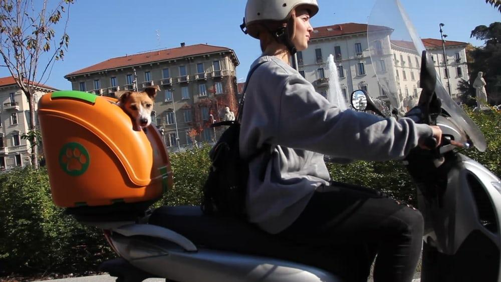 The Pet onWheels is a safe, comfortable carry case for transporting pets on bicycles, scooters andmotorbikes