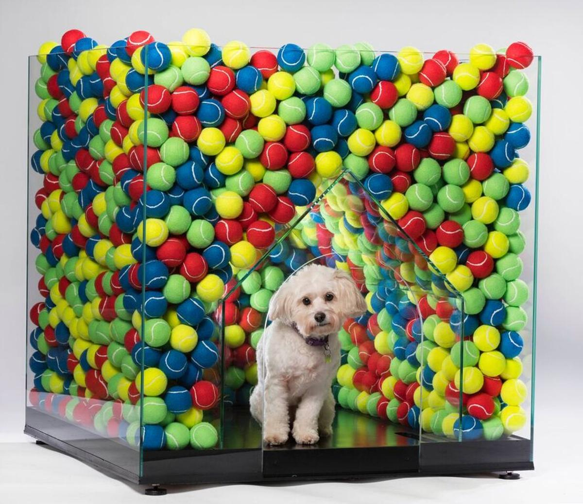 The DW Kennel was designed by Denizen works, Cantifix and Arrant Land. It holds 2,000 tennis balls to ensure the dog never runs out of balls to play with