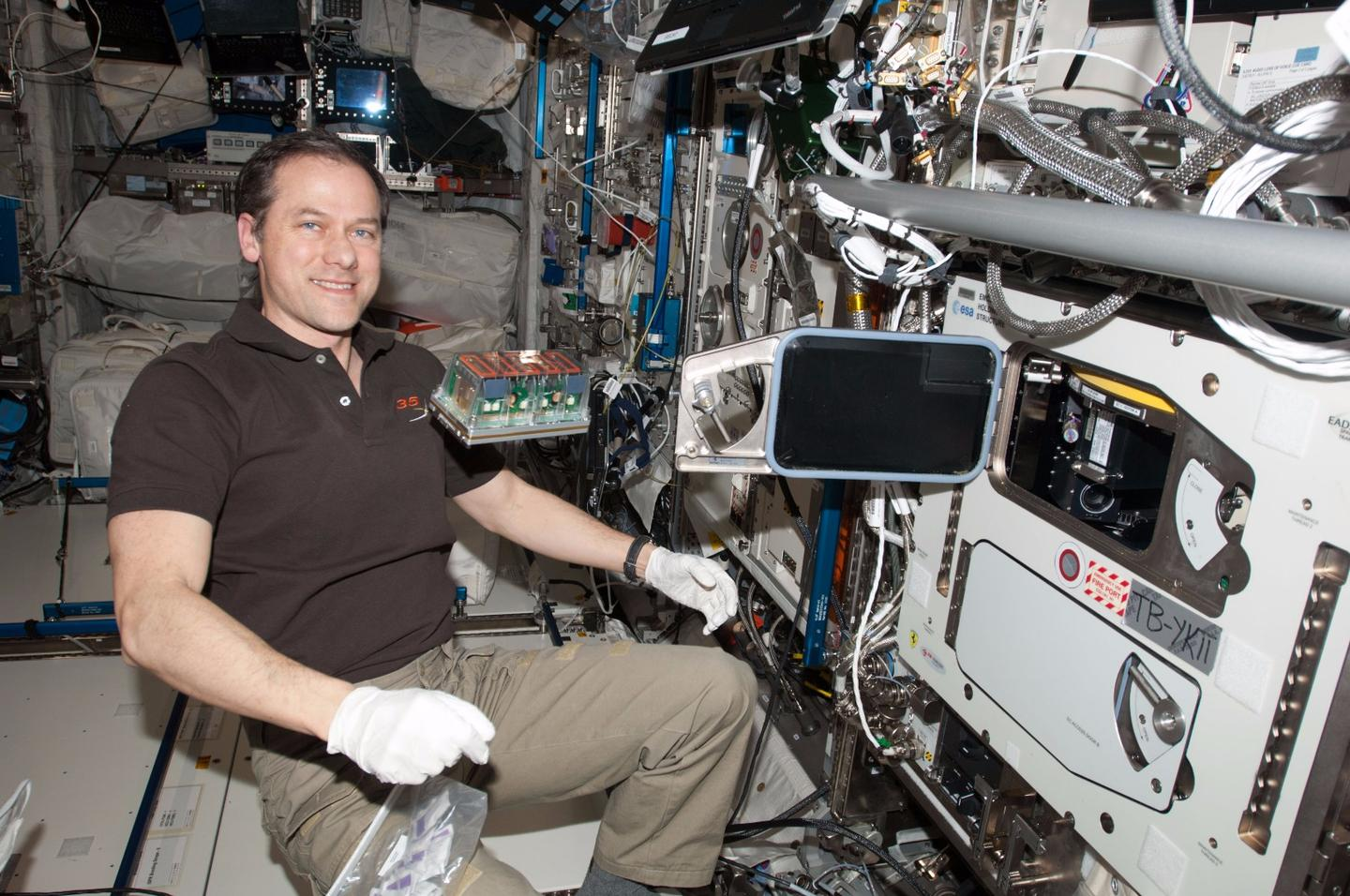 NASA astronaut Tom Marshburn, with a seedling cassette about to be loaded into the incubator