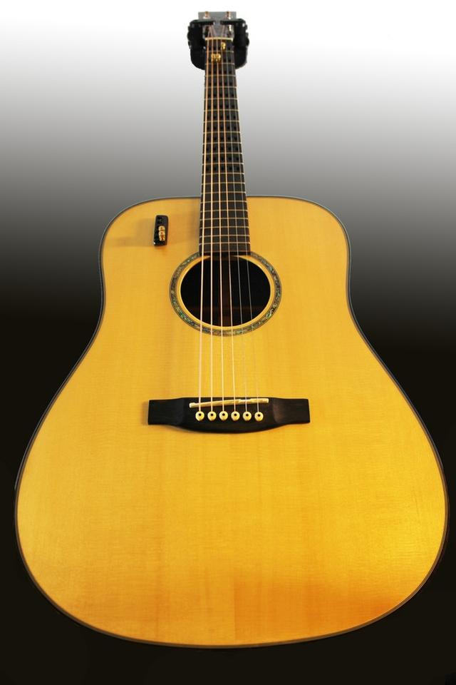 Two Gillis Capo Guitars are raising production funds on Kickstarter, a premium model and a basic dreadnought (shown)