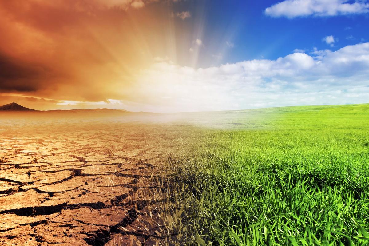 One of the most comprehensive climate databases has revealed clear evidence of human-induced climate change