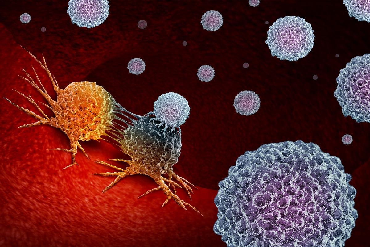 Researchers have tested a new form of cancer immunotherapy called CAR-NK cell therapy