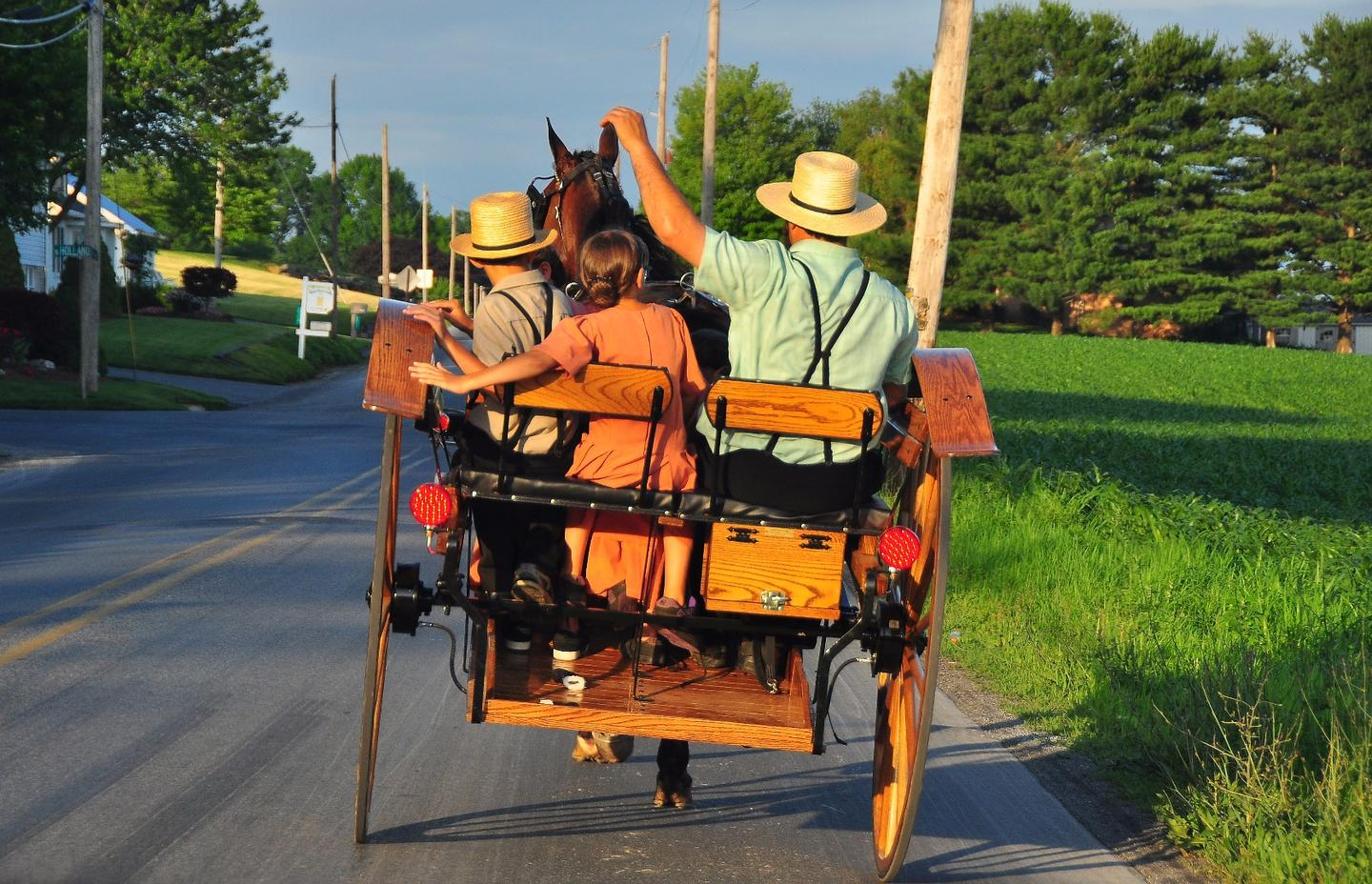 Scientists have discovered a genetic mutation in an Amish community that lets them live longer and protects them from diabetes and other age-related illnesses