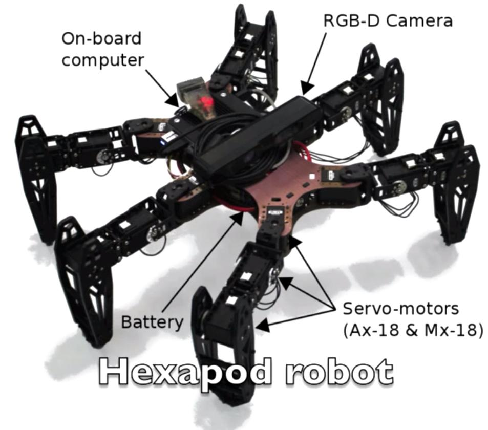 Developed by roboticists at the Pierre-and-Marie-Curie University, the hexapod uses what the team calls a T-resilience (the T standing for Transferability-based) algorithm