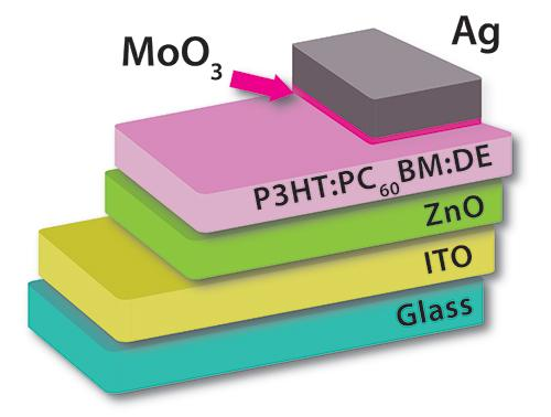 The diatoms were added to the thin active layer in the organic solar cell