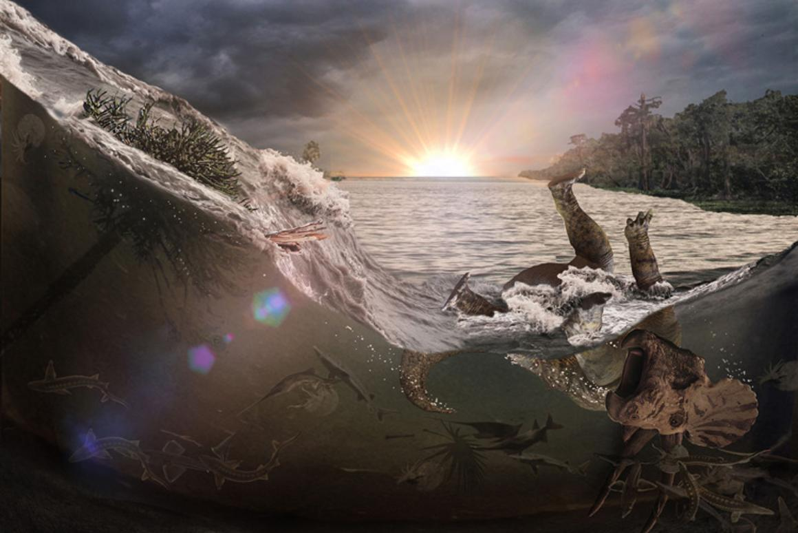A meteor impact 66 million years ago generated a tsunami-like wave in an inland sea that killed and buried fish, mammals, insects and a dinosaur, the first victims of Earth's last mass extinction event