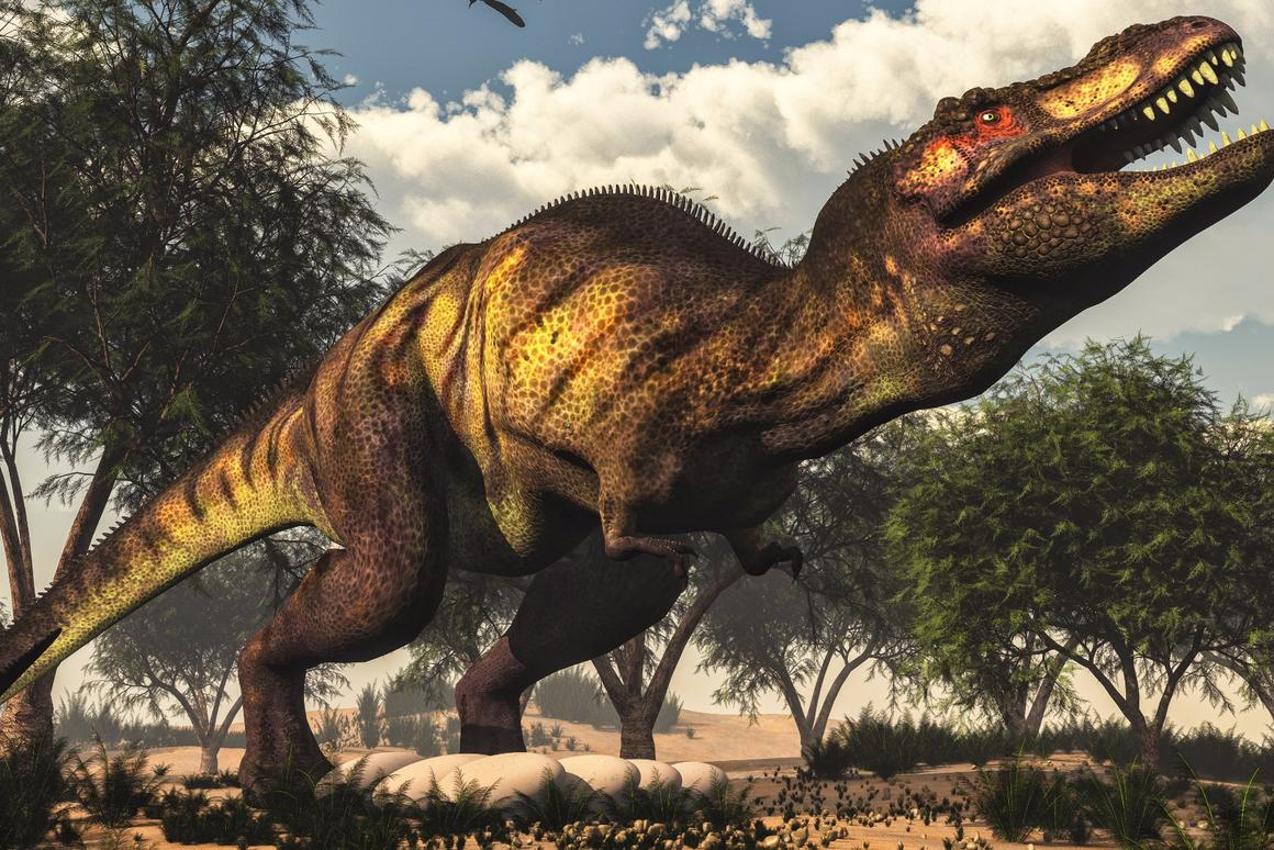 New computer modeling claims that the T. rex wouldn't have been able to run due to its size and weight