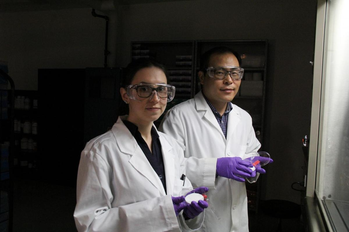 Hyo-Jick Choi (right) and graduate student Ilaria Rubino examine samples of filters treated with a solution that kills viruses