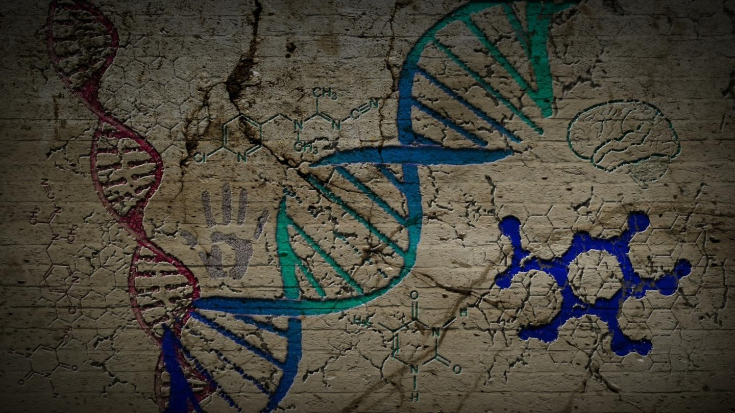 Evidence of two unknown, archaic human species has turned up in our DNA