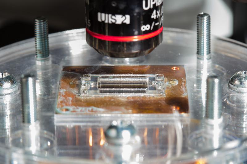 Experimental setup of the chip