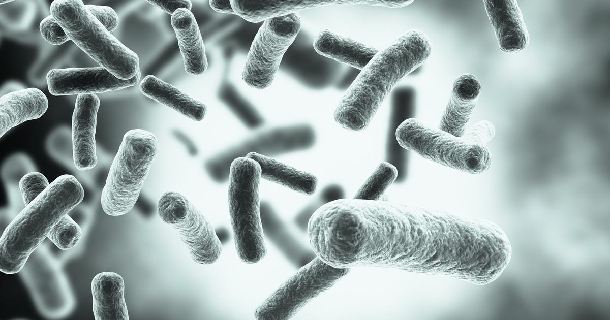 Multilayered microvehicles lure, trap and kill super bacteria
