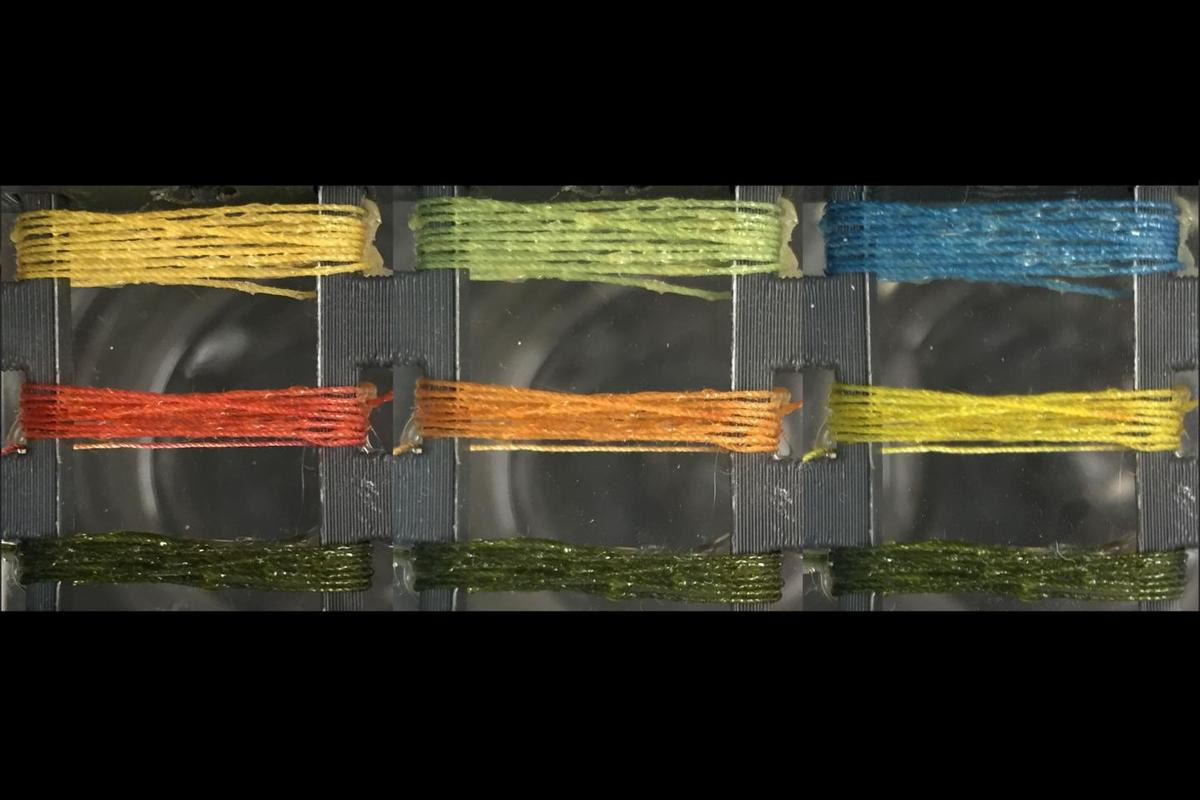 Threads prepared with bromothymol blue (top thread), methyl red (middle thread) and MnTPP (bottom thread) are exposed to ammonia at concentrations of 0 ppm (left panel) 50 ppm (middle panel) and 1,000 ppm (right panel)