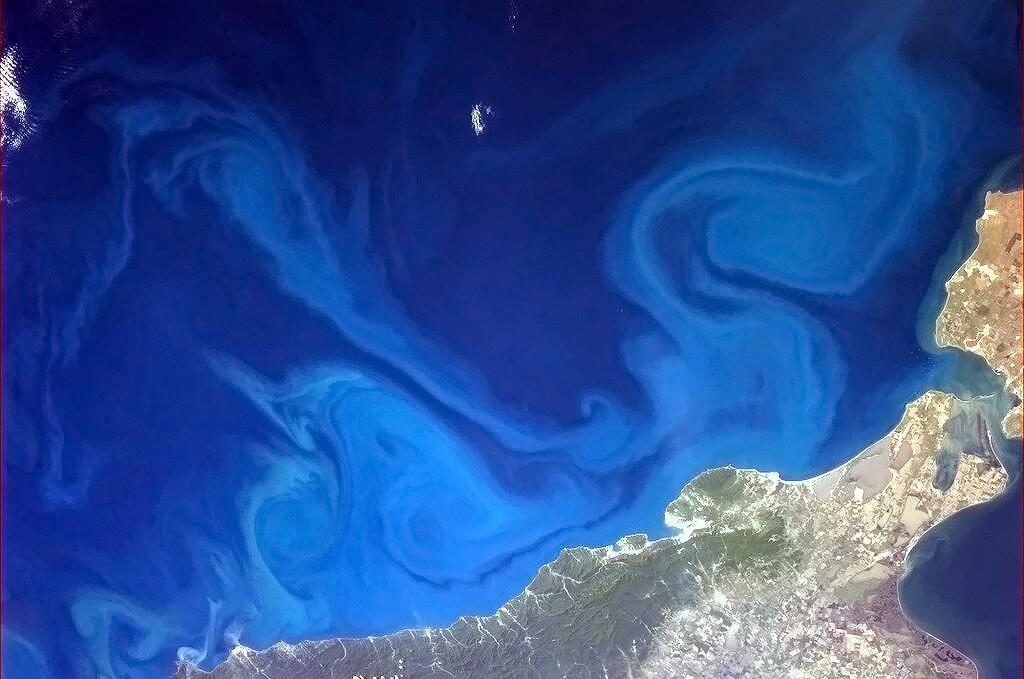 "Hadfield: ""Dr. Seuss-inspired swirls in the Black Sea"" (Photo: Chris Hadfield/NASA)"