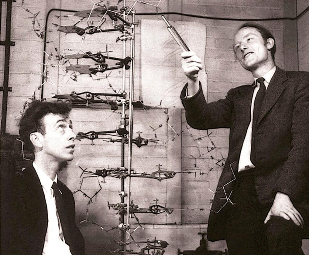 """Francis Crick (above right) was a British physicist turned biologist, who along with James Watson (above left), and building upon the work of Maurice Wilkins, Rosalind Franklin and others, the pair finally decoded the structure of deoxyribonucleic acid (DNA) on Saturday, 28 February, 1953. Later that afternoon, Crick would announce to the patrons of the Eagle Pub in Cambridge (U.K.), """"we have discovered the secret of life."""""""