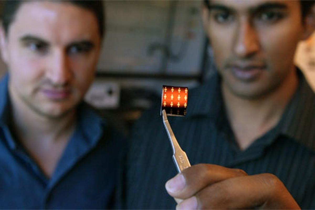 Princeton engineers Michael McAlpine and Manu Mannoor with a frog peptide chip (Photo: Frank Wojciechowski)