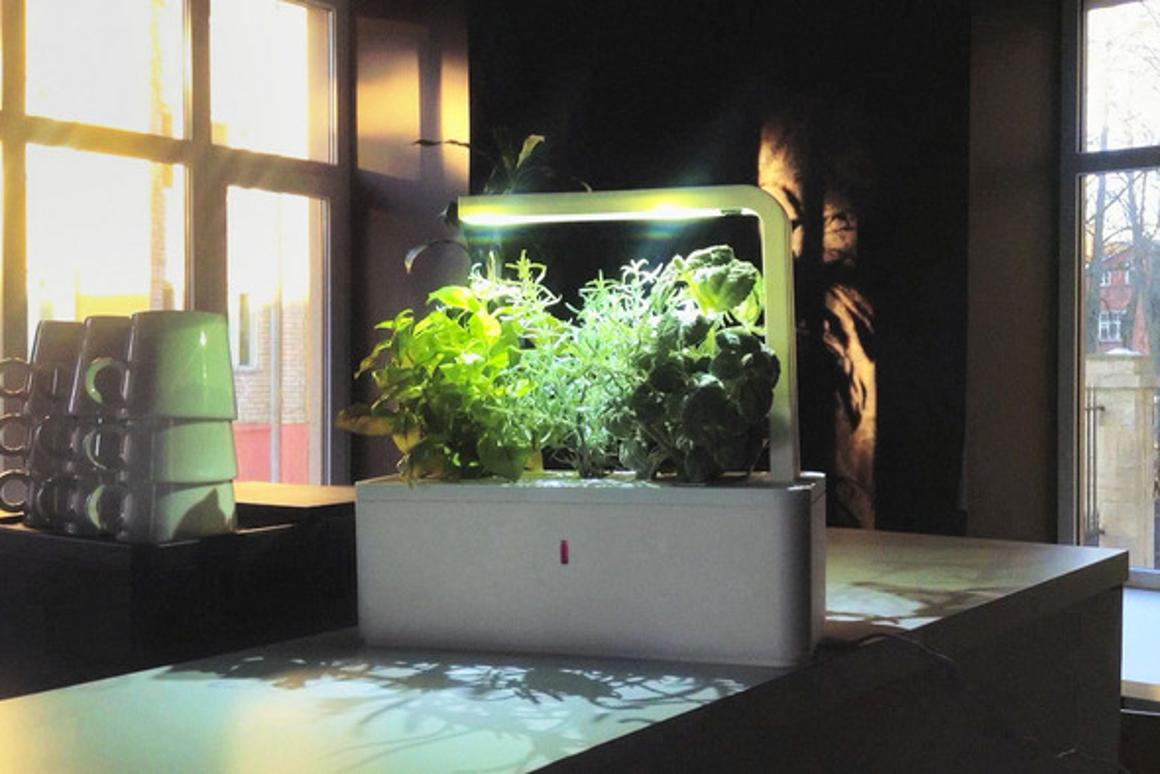 The Smart Herb Garden features an LED light and capacity for three different plants