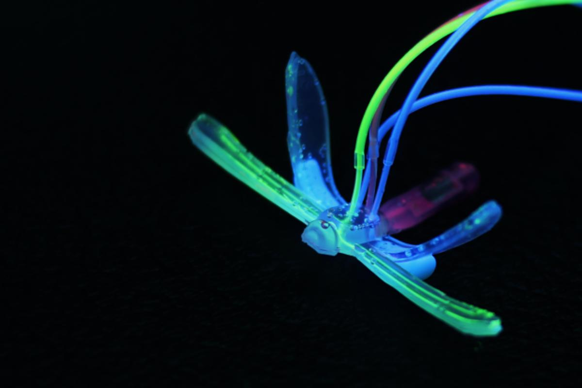 A new robotic Dragonfly developed at Duke University could become a multipurpose environmental monitor